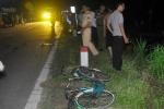 Xe máy ủi bay cột mốc rồi tông vào xe đạp, 2 người chết thảm