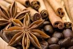 Vỏ cây quế: Vị thuốc quý khống chế sự sinh sôi của tế bào ung thư