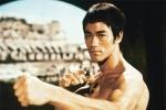 Lý Tiểu Long là cao thủ đấm nhanh nhất giới võ học