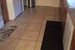 Căng mắt tìm chú chó ngụy trang siêu giỏi trong nhà bếp
