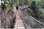 Chuyện thật như đùa: Nông dân xây cầu vượt trên vách đá cho dê đi ăn ở Hòa Bình