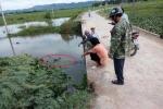 Chở con trai qua cầu không lan can, mẹ rơi xuống vực nước chết đuối