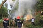 Cháy rừng ở Hải Phòng, một người đàn ông bị thiêu rụi