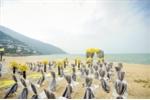 Weddings on the Beach (2)