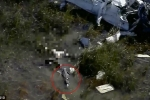 Clip sốc: Máy bay rơi xuống vùng đầm lầy, xác học viên phi công bị cá sấu ăn thịt