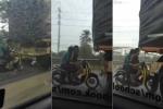 Thót tim cảnh xe máy trú mưa theo phong cách 'thách thức thần chết'