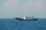 Tàu cá Trung Quốc đánh bắt trái phép gần đảo Cồn Cỏ