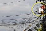 Đang sửa chữa, một công nhân bị điện giật bất tỉnh