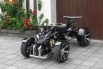 Dân chơi Việt 'sốt xình xịch' với môtô 4 bánh giá 80 triệu