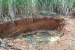 Hố 'tử thần' há miệng trong vườn mía ở Thanh Hóa