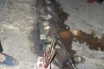 Xác cá hình thù kỳ lạ dài gần 4m dạt bờ biển Hà Tĩnh