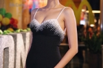 Ho Ngoc Ha va dan sao Viet chay tan loan sau su co chay san khau hinh anh 8