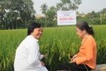 PGS.TS Nguyễn Thị Trâm người cả đời say sưa với cây lúa