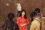 Hot girl Kiều Trinh bên vườn đào lọt top ảnh ấn tượng 2016 trên Reuters