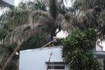 Nam thanh niên nghi ngáo đá nhảy múa nhiều giờ đồng hồ trên mái nhà