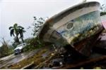 Hơn 260 người chết vì bão Matthew
