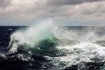 Tin mới về vùng áp thấp trên Biển Đông