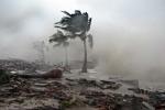 Bão Nida tăng cấp vào Biển Đông thành cơn bão số 2