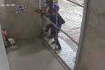 Clip: Trộm gặp phải ổ khóa 'cứng', đành 'bó tay' rút lui
