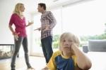 Nói xấu chồng cũ trước mặt con, bị phạt hơn 700 triệu đồng