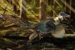 Phát hiện hóa thạch của loài 'khủng long rồng' ở Trung Quốc