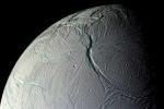 Ảnh quốc tế 29/7: Tìm thấy sự sống ngoài hành tinh?