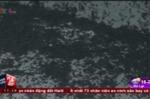 Rợn người cảnh bọ đậu đen ùn ùn tấn công nhà dân ở Phú Yên