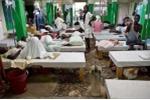 Nạn đói hoành hành theo dịch Ebola
