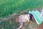 Tá hỏa phát hiện người phụ nữ chết bên ruộng lúa