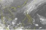 Tin cập nhật: Bão số 9 suy yếu, gây mưa to Đà Nẵng - Khánh Hòa