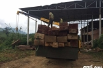 Phát hiện lô gỗ quý hiếm vô chủ