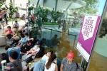 Xếp hàng mua iPhone 7 ở Singapore: Tranh cãi và bị giải tán