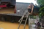 Ảnh: Muôn kiểu chống mưa ngập kỷ lục của dân miền Trung