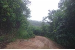 Đã xác định khu vực máy bay trực thăng rơi tại núi Dinh