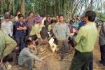 Xác định danh tính 3 nhân viên bảo vệ bị bắn chết tại Đắk Nông