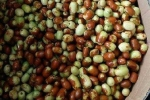 Liều mạng ăn 'thần dược' táo Trung Quốc thâm xỉn 100.000/kg