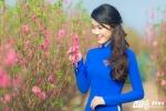 Mai Phuong (4)