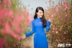 Mai Phuong (6)