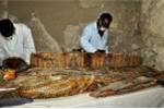 Phát hiện chấn động: Ngôi mộ 3.500 năm chứa kho báu khổng lồ