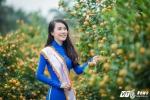 Mai Phuong (11)