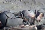 Phát hiện hàng trăm bộ xương quái thú ở Peru