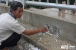 Cầu 'cốt xốp' 65 tỷ đồng ở Hà Nội: Đơn vị thi công thừa nhận thiếu sót gây hiểu lầm