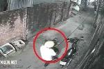 Clip: Đi xe máy bê trộm chậu mai trước cửa nhà dân lúc sáng sớm