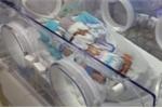 Bệnh viện cấp quận nuôi dưỡng và chăm sóc thành công bé sinh non nặng 1.500 gram