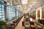 Giả mạo vé máy bay tinh vi, nam hành khách sống sang chảnh ở sân bay 3 tuần