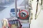 Clip: 'Cẩu tặc' đi ôtô, quăng dây thừng bắt chó trong 6 giây