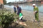 Đi cắt cỏ, tá hỏa phát hiện thi thể người phụ nữ đang phân hủy