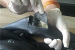 Giấu 4,5kg tiền chất ma túy tổng hợp trong săm xe máy