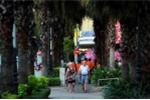 Những vỉa hè đẹp nhất Sài Gòn làm mê đắm lòng người