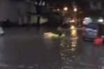 Sài Gòn ngập sâu, khách Tây mang phao ra phố bơi lội